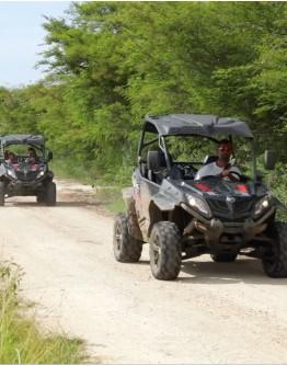 En buggy la Guadeloupe traditionnelle s'ouvre à vous !