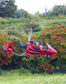 Autogire flight