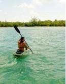 La Mangrove en kayak au coucher du soleil