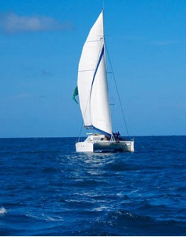 Delphis Catamaran ride