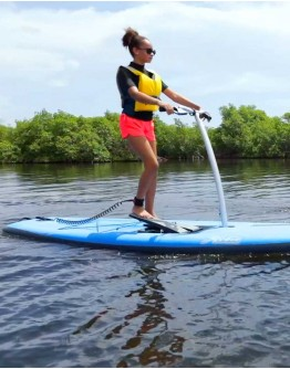 Step-Paddle